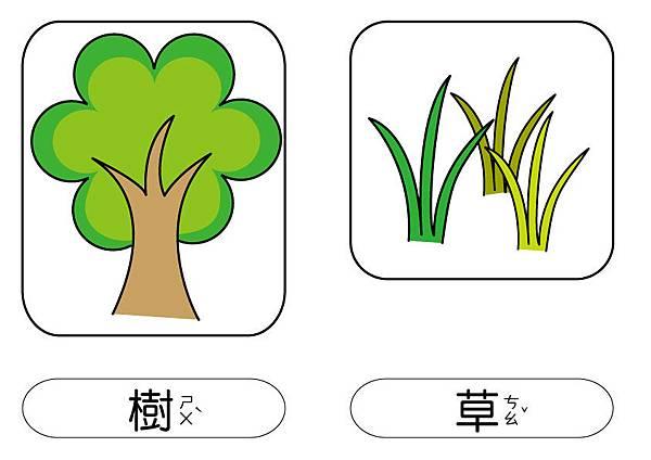 彩色圖卡-樹+草.jpg
