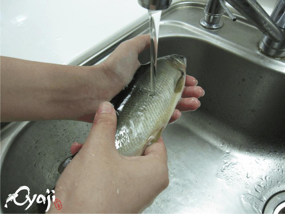洗魚.bmp
