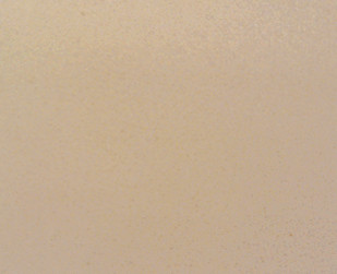 北極白 L4125.jpg