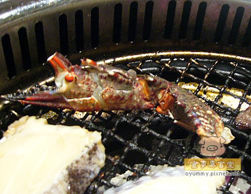 台南美食-石頭炭火燒肉