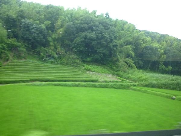 新幹線9.JPG