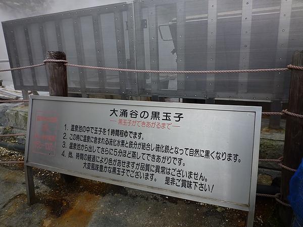 箱根104.JPG
