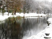 1108 avon-river(001).jpg