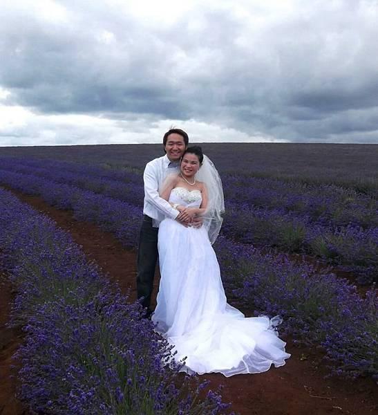 Bridestowe Lavender(tas10