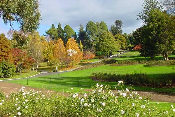 Botanical Garden(Hobart