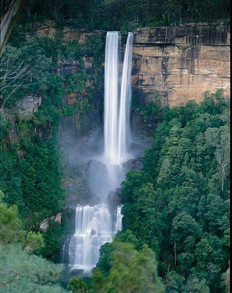 Southern Highland(Fitzroy Falls