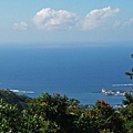 SAMOA APIA(BOTANIC GARDEN