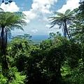 SAMOA SAVALI(MT SILSI