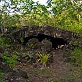 SAMOA SAVALI(HOUSE OF ROCK