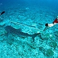 Conrad Maldive(Rangali island)48.jpg