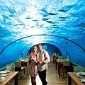 Conrad Maldive(Ithaa Undersea Rest)5.jpg