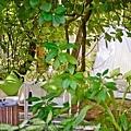 Niyama Resort(Maldive)16.jpg