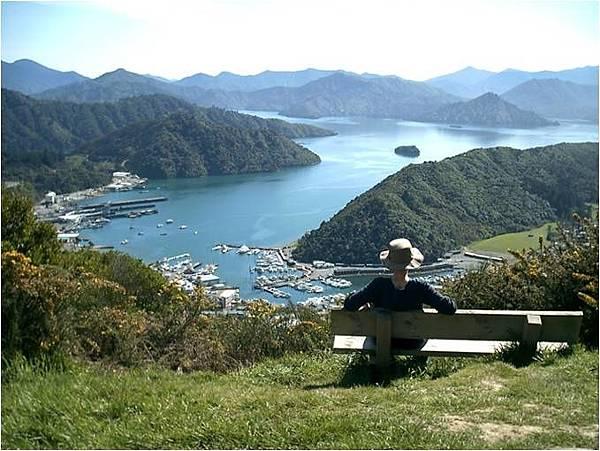 Picton (ariel view.jpg