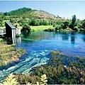 Takaka Springs(1.jpg