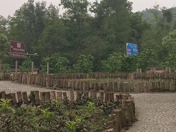 都江堰 (42).jpg
