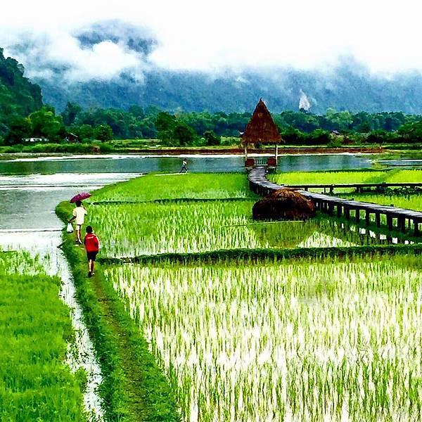 Vieng Tara Villa(VANG vIENG24.jpg