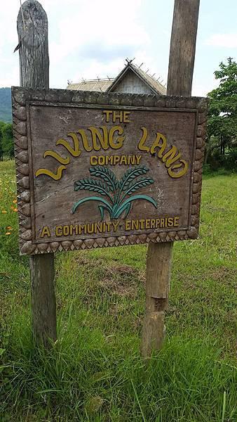 Living land farm6.jpg