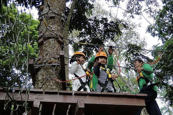 Lao Green (LPQ ;green jungle24.jpg