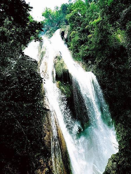 Lao Green (LPQ ;green jungle17.jpg