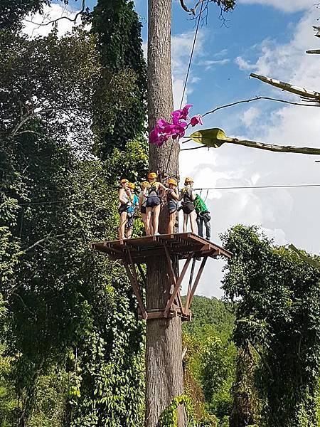 Lao Green (LPQ ;green jungle11.jpg
