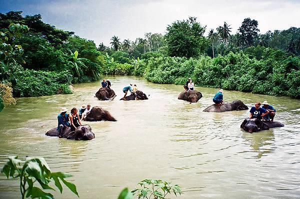 Elephant Sanctury Village(LpQ;3