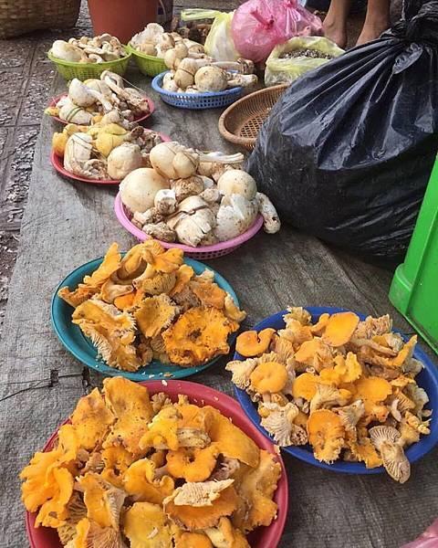 Tamarind Cooking Courses(LPQ3
