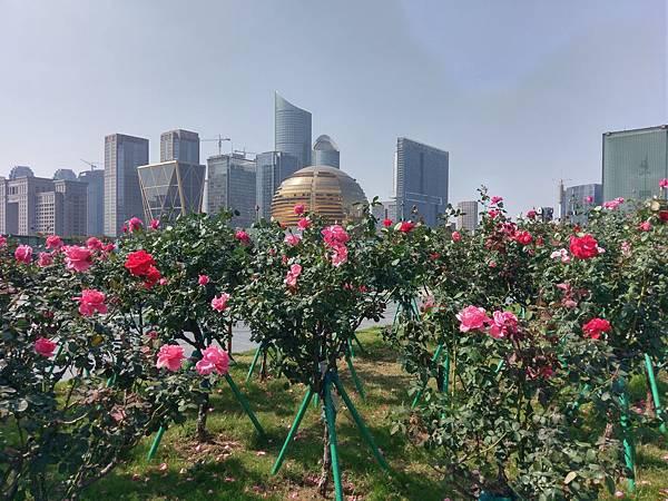 171023 杭州 (25).jpg