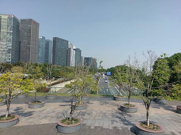 171023 杭州 (31).jpg