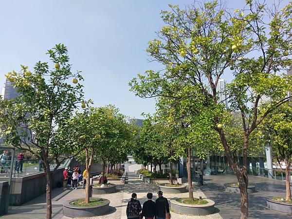 171023 杭州 (32).jpg