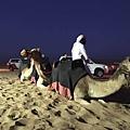CAMEL RIDE(DESERT DAFARI.jpg