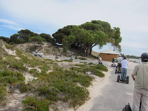 18 WA(Rottnest Island) (35).JPG