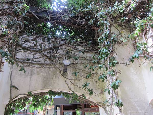 18 WA(winery &cave) (3).JPG
