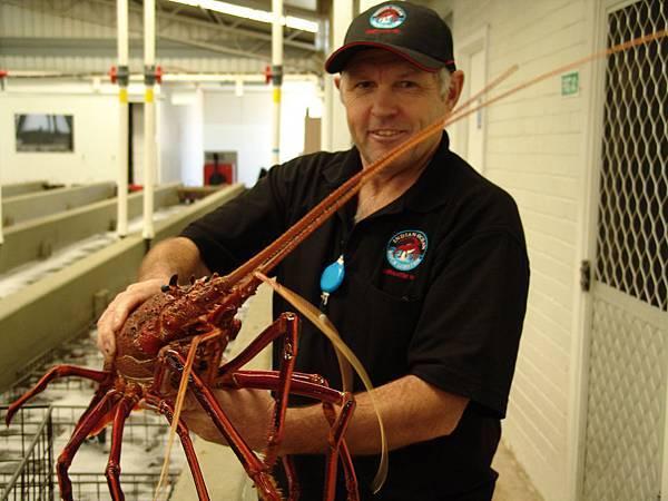 Indian Ocean Rock Lobster Factory - 该区一年四季出产新鲜农产品 (1)