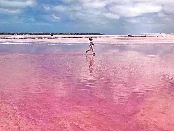 N pink lake(fly (2)