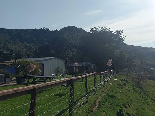 HILL TOP 景觀餐廳(往羊駝場途中) (6).jpg