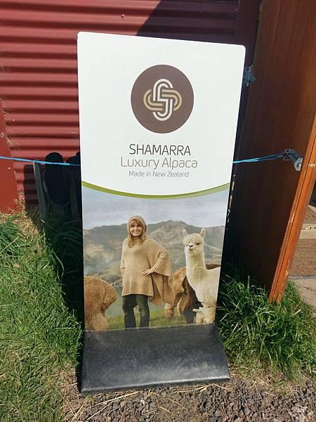 SHAMARRA ALPACAS FARM (40).jpg