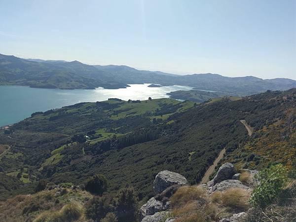 SCENIC NATURE TOUR(AKAROA (6).jpg