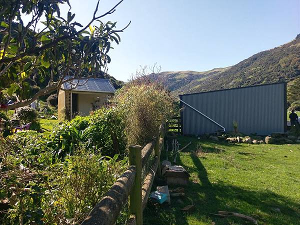 SCENIC NATURE TOUR(AKAROA (21).jpg