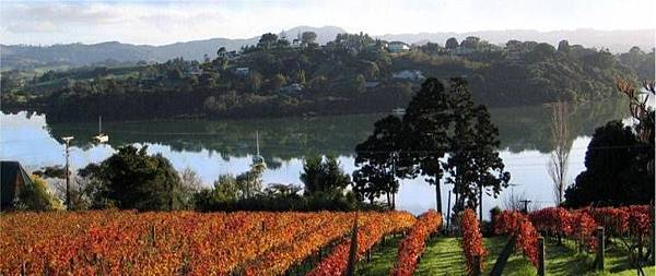 Matakana Tours(AKL;Warkworth a 45-minute drive North of Auckland CBD and in the centre of the beautiful Matakana Coast Wine Country..jpg