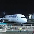 紐航開航新聞.jpg