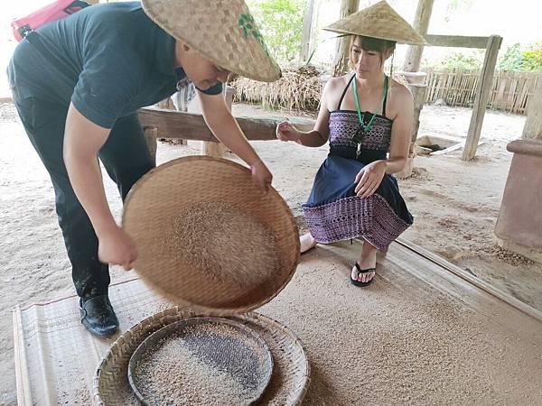 傳統篩米 (1).jpg
