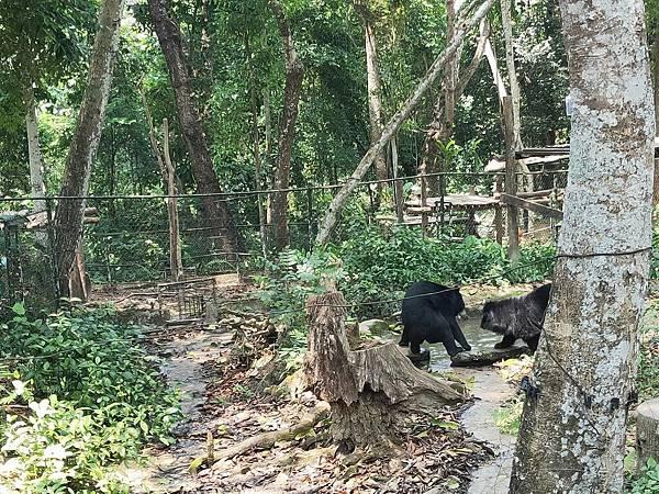 黑熊保護區.jpg