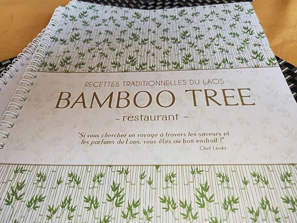 Bamboo Tree(LPQ) (1)