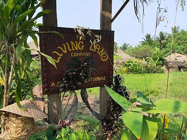 Living Land(LPQ (1)