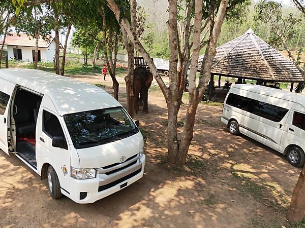 Manifa Elephant camp