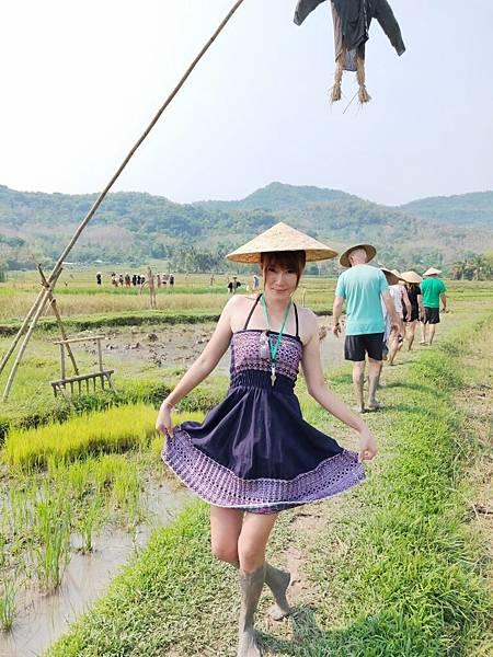 農家樂(LPQ (4)