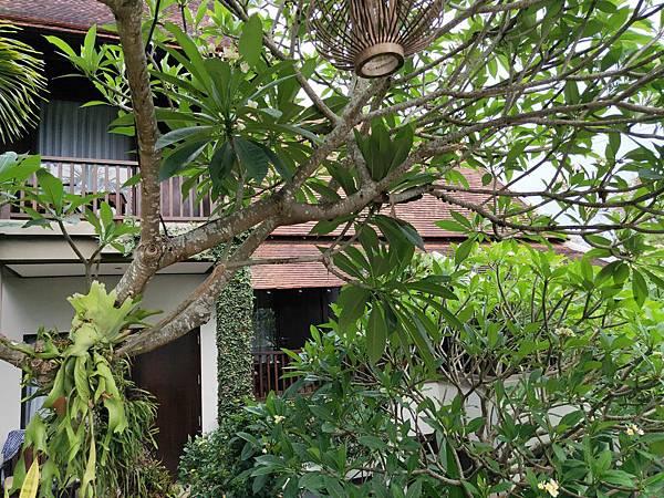 飯店設施(Kiridala (2)
