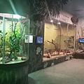 Wildlife Sydney Zoo (2).jpg