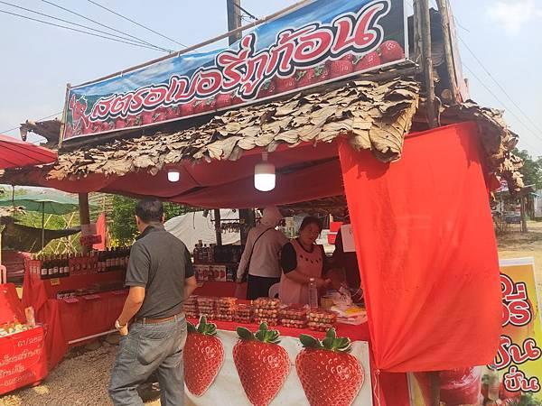 草莓(藍廟 (2).jpg