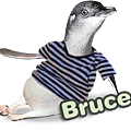 Bruce_large.png